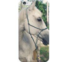 DonQui iPhone Case/Skin