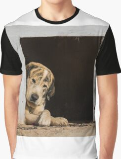 A dogs life Graphic T-Shirt