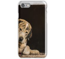 A dogs life iPhone Case/Skin