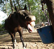 """Shaq """"Yawn!"""" by malipsey"""