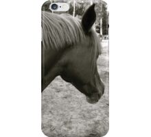 "Frito ""From my point of view"" iPhone Case/Skin"