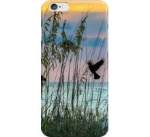 Foraging at Sunset iPhone Case/Skin