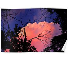 Way Up High,  Pretty Pink Clouds In The Sky Poster