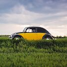 Classic Beetle Square by Edward Fielding