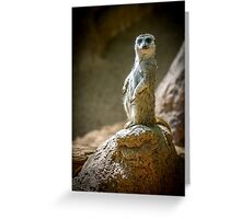 Ive got my eye on you Greeting Card