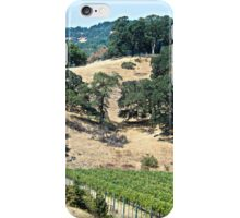 A California Vineyard During the Drought iPhone Case/Skin