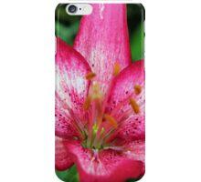 Lily Closeup iPhone Case/Skin