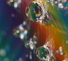Rainbow Waterdrops by Dan Dexter