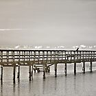 Urunga Boardwalk by wallarooimages