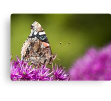 Red Admiral Butterfly With Green Bokeh Canvas Print