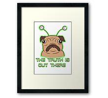 The Pug Files- fawn fur Framed Print