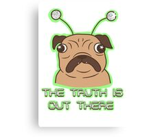 The Pug Files- fawn fur Canvas Print