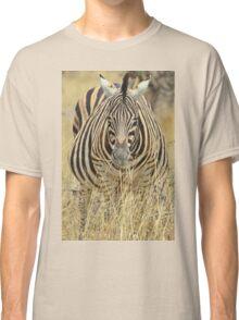 Zebra - African Wildlife - Laboring Pregnancy  Classic T-Shirt