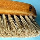 Old clothes brush by bubblehex08