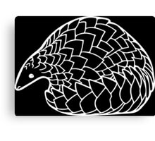 Pangolin in White Canvas Print