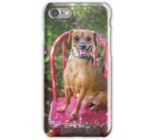 Smiling Dog on Chair iPhone Case/Skin