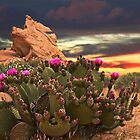 CACTUS PLANT @ VALLEY OF FIRE LAS VEGAS  by ✿✿ Bonita ✿✿ ђєℓℓσ