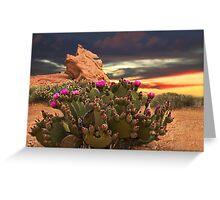 CACTUS PLANT @ VALLEY OF FIRE LAS VEGAS  Greeting Card