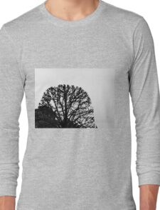 Graphic Branches Long Sleeve T-Shirt