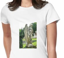 Beautiful Stone Angel.......Dorset UK Womens Fitted T-Shirt