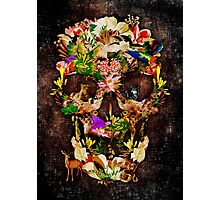 Animal Kingdom Sugar skull Photographic Print