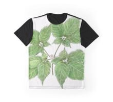 American Ginseng Drawing Graphic T-Shirt