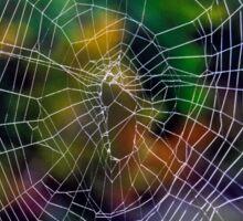 Spider Web Sticker