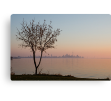 Soft, Pink Morning on the Lake Shore Canvas Print