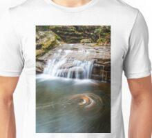 Autumn Swirls  Unisex T-Shirt