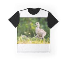 Baby Geese in the Morning Light  Graphic T-Shirt