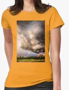Beautiful Formations Womens Fitted T-Shirt