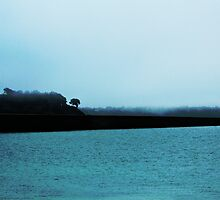 Misty way by chelo