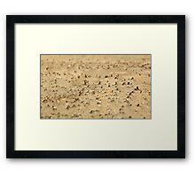 Miniatures on the sand Framed Print