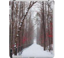Beautiful Pinks  iPad Case/Skin
