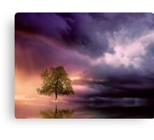 The lonely Tree and dramatic sky Canvas Print