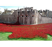 Tower of London Remembers WWI Photographic Print