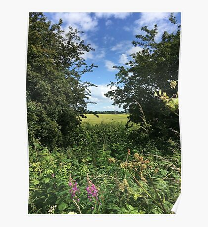 Summer Meadow and Blue Sky to Heaven Poster