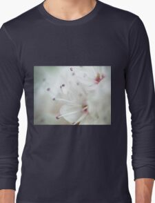 Super macro - this is NOT a cherry blossom! Long Sleeve T-Shirt