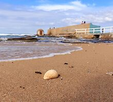 Sun, Sand, Surf and Shell in Newcastle by tismeau