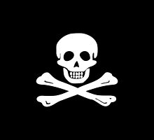 Flying Gang Pirate Flag by kayve