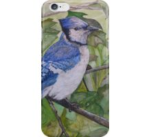 BLUE JAY - water color iPhone Case/Skin
