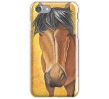 Horse Stare iPhone Case/Skin