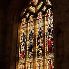 Stain Glass  by Paul  Donaldson