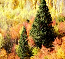 Queenstown NZ Autumn Splendor  Sticker