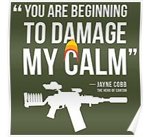 Damaging My Calm Poster