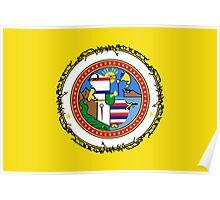 Honolulu Flag Poster