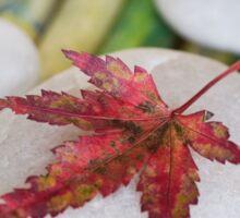 Autumn Zen Sticker