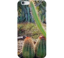 ...lean on me... iPhone Case/Skin