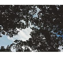 A space above Photographic Print