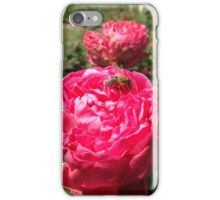 Bee on Rose iPhone Case/Skin